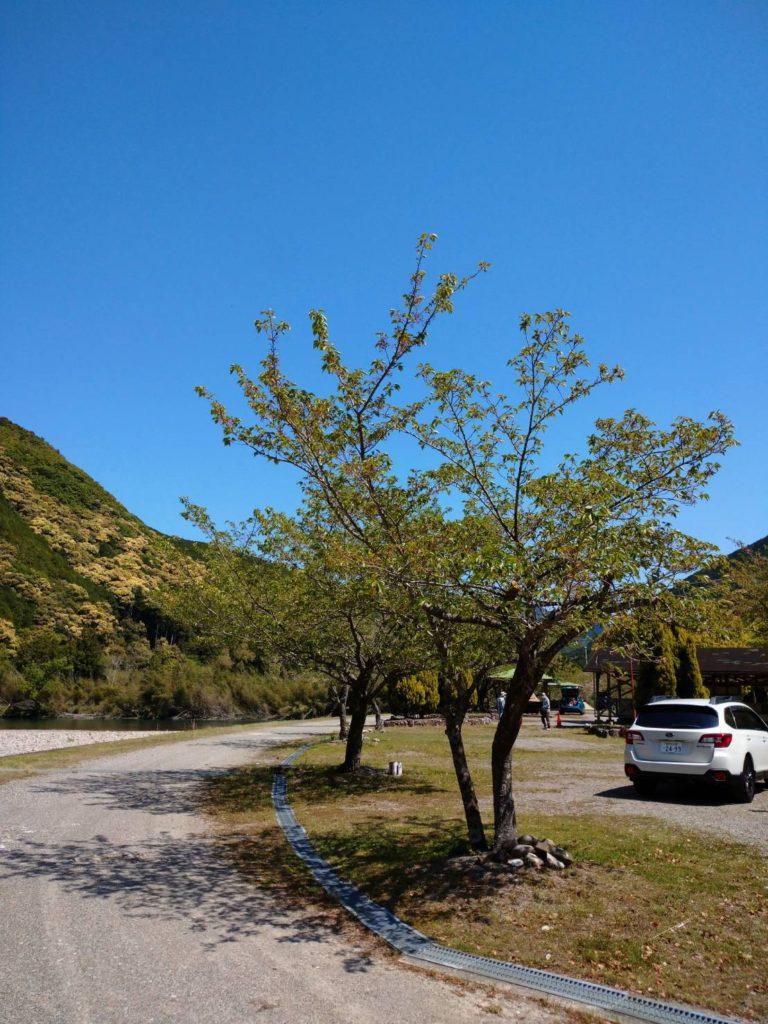 向平キャンプ村入り口写真