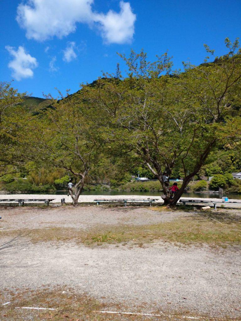 向平キャンプ村テントサイト